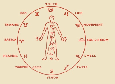 Detail of Astrological Signs and Twelve Senses from Book Cover