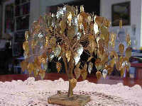 Golden Leaves  Tree